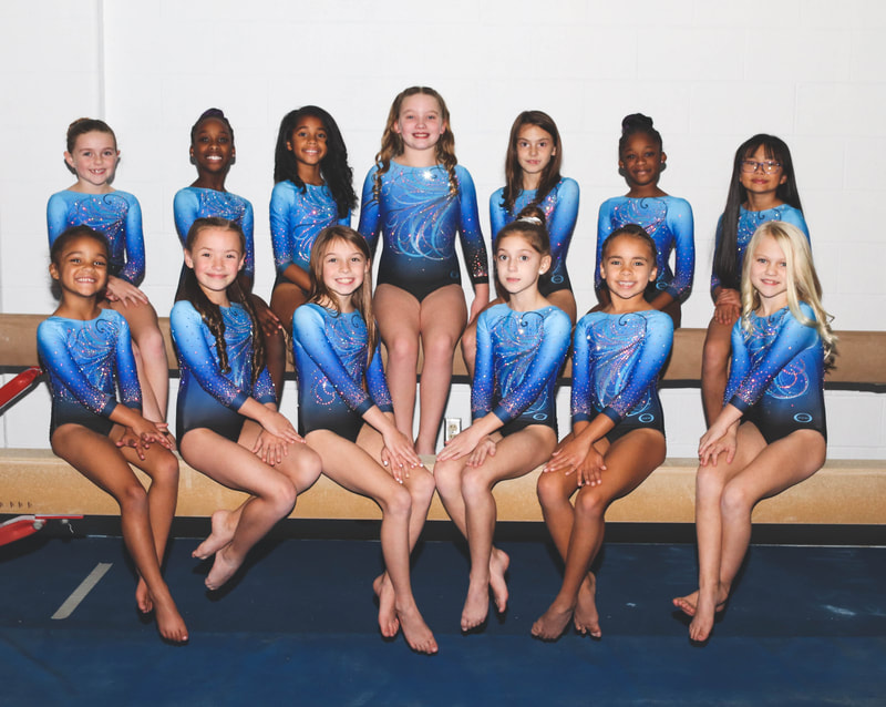 Our Xcel Bronze team is our entry level for team gymnastics. These girls are just starting their competitive careers and working hard to learn our foundation that will take them through to our higher levels.  They participate in roughly 6-8 competitions during their season including the TN State competition to round off the year.